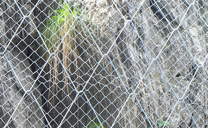 SPIDER绞索网