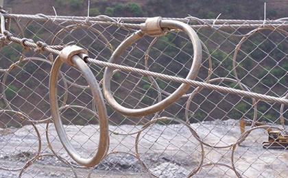 RXI-025型环形网